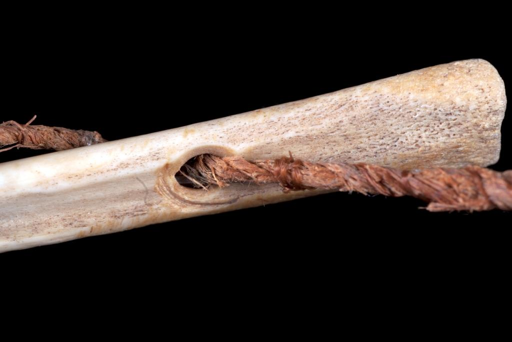 closeup_bone needle