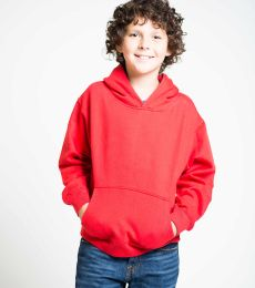 Y2600 Cotton Heritage Tyler Unisex Youth Pullover
